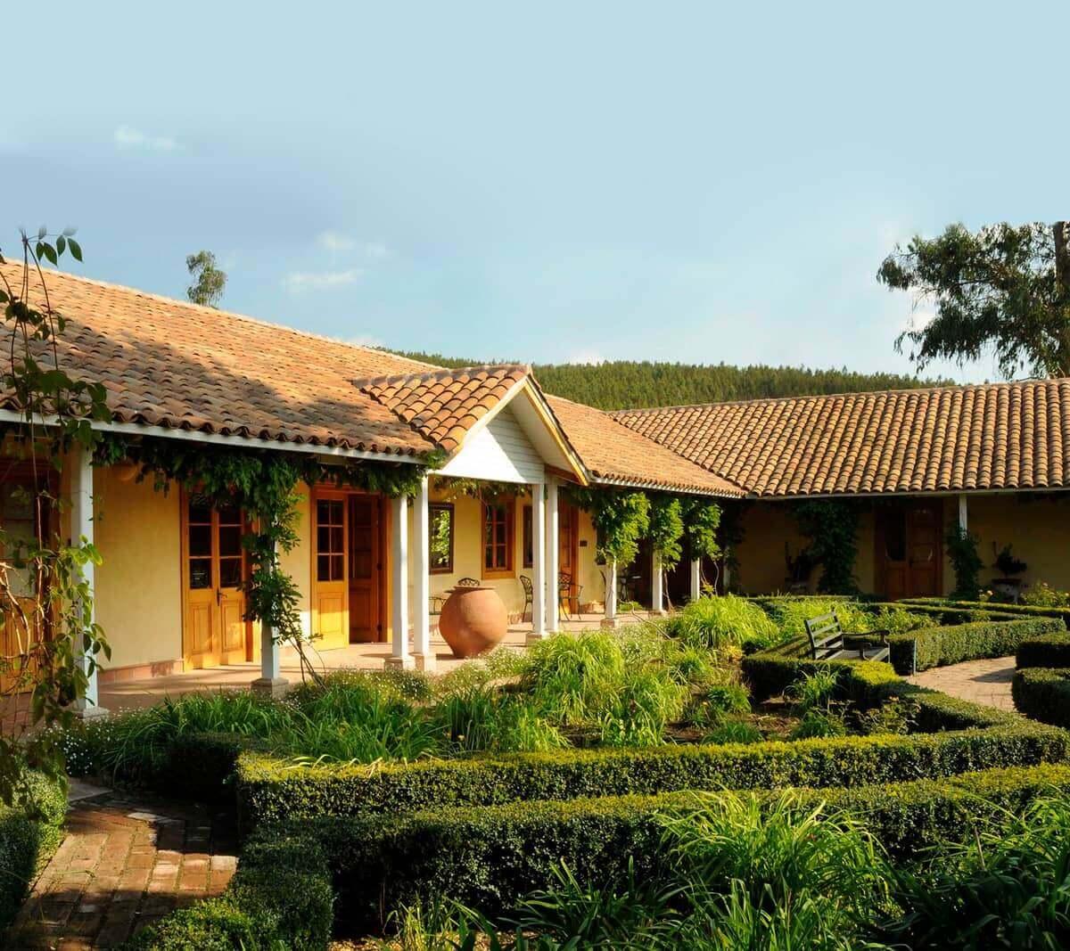 Chile - Matetic Vineyard